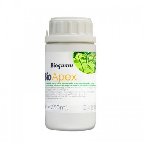 Apex BioQuant