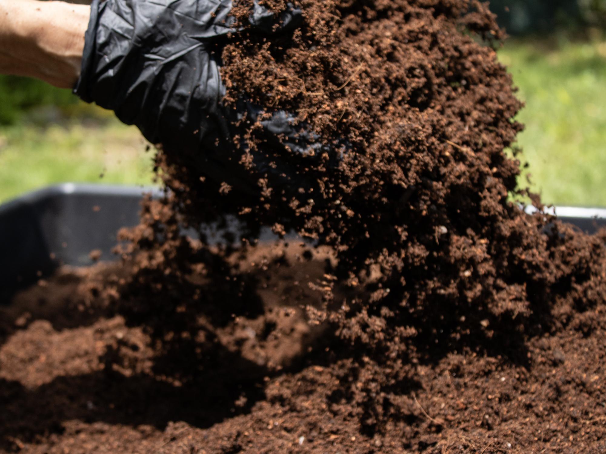 Cadena alimentaria del suelo